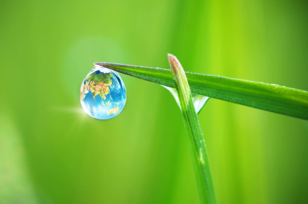 Solarlife, sostenibili e innovativi per vocazione